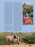 001-127_109500205 SL No 39 F - Limpopo Horse Safaris - Page 3