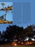 001-127_109500205 SL No 39 F - Limpopo Horse Safaris - Page 4