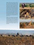 001-127_109500205 SL No 39 F - Limpopo Horse Safaris - Page 5
