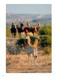 001-127_109500205 SL No 39 F - Limpopo Horse Safaris - Page 6