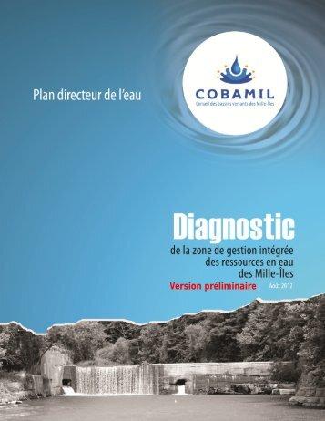 Diagnostic préliminaire de la zone des Mille-Îles - Cobamil