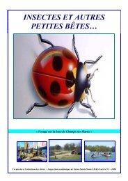 10- Les insectes et autres petites bêtes - Seine-Saint-Denis