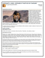 ÉLÉPHANTS, LIONS, LÉOPARDS ET BUFFLES EN TANZANIE