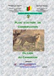 Plan d'action de conservation du lion - Large Carnivore Initiative ...