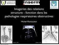 Imageries des relations structure - fonction dans les ... - index