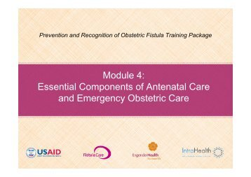 return on investment for emergency obstetric care training Second, training providers in emergency obstetric care is critical for reducing maternal mortality [26]we found according to healthcare providers, investments in transportation and communication infrastructure, in-service training in bemonc, and supportive supervision are priorities to support the.