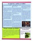 Volume 6 numéro 1 - Centre de santé et de services sociaux du Lac ... - Page 6