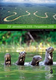 Annual Report 2008 - Zoologische Gesellschaft Frankfurt