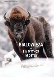 BIALOWIEZA - Zoologische Gesellschaft Frankfurt