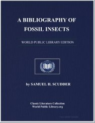 A BIBLIOGRAPHY OF FOSSIL INSECTS - World eBook Library