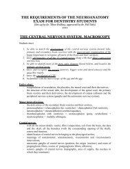 the requirements of the neuroanatomy exam for dentistry students