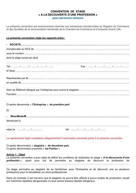 Convention De Stage Mineur Cci Grand Lille