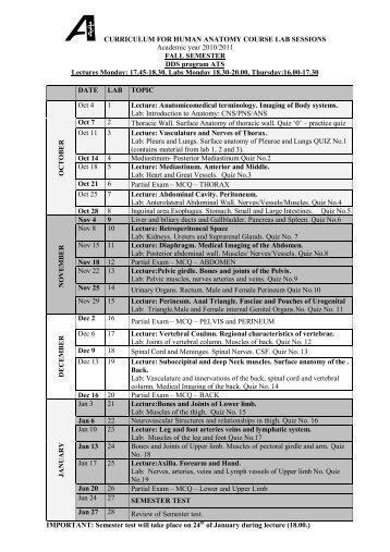 Curriculum For Md Anatomy Fmsc
