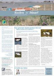 Rivière de Pénerf n° 9 - Syndicat intercommunal d'aménagement du ...