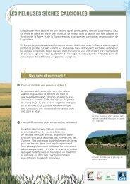 Les pelouses sèches calcicoles - LPO