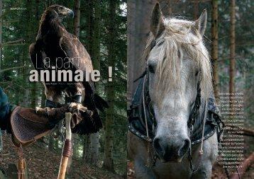 Débardeur au cheval, dresseur-fauconnier, éducateur de ... - sujetlibre