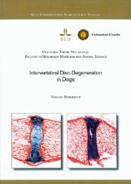 Intervertebral Disc Degeneration in Dogs - BioMedical Materials ...
