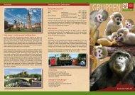 Download Flyer - Zoo Halle
