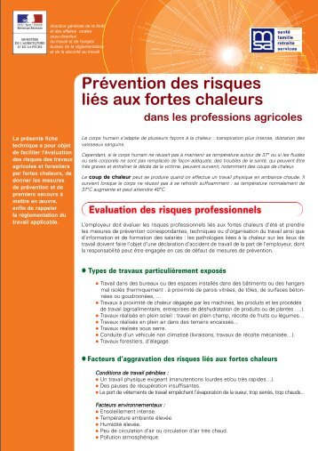 Prévention des risques liés aux fortes chaleurs - DRAAF Lorraine