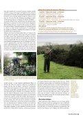 De magnifiques rous s - Derry Quay Lodge - Page 4