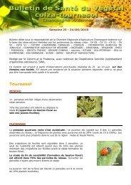 BSV CHAMPAGNE-ARDENNE tournesol 2010 s25 - Chambre d ...