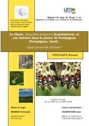 La Diane, Zerynthia polyxena - Master écologie biodiversité
