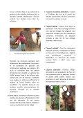 ALERTE ! - caritasdev.cd - Page 3