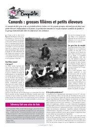 Canards : grosses filières et petits éleveurs - Le Canard Gascon