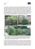 Les cultivars des plantes invasives présentent-ils également un ... - Page 3