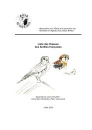 Liste des oiseaux de Guadeloupe et Martinique