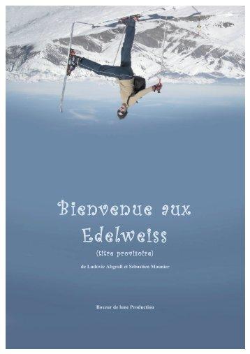Bienvenue Aux Edelweiss - Pilote