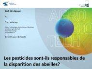 Les pesticides sont-ils responsables de la disparition des abeilles?