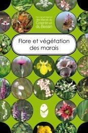 Flore et végétation des marais - Parc Naturel Régional des Marais ...