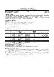 Essai variétal de framboise remontante sous abris - CDDL