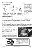Quelle limace - Cercles des Naturalistes de Belgique - Page 3