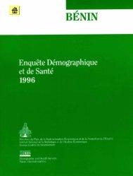 Rapport EDSB-1.pdf - Institut national de la statistique et de l ...