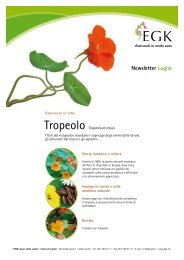 Tropeolo