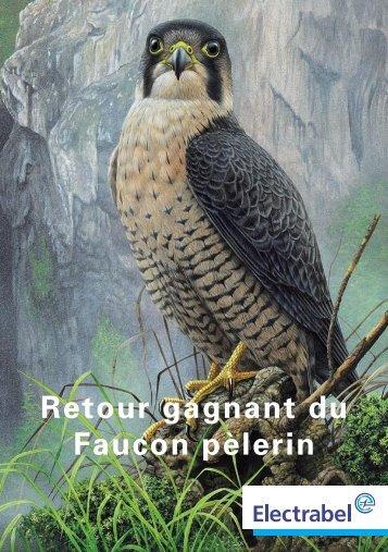 5060-Folder SV-FR.indd - Institut Royal des Sciences Naturelles de ...