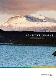 Livcykelanalys-2005_11336961