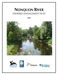 Nonquon River Fisheries Management Plan 2009 - Ministry of ...