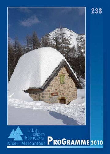Cristal de neige sur vitre en janvier 2009 - Club alpin français