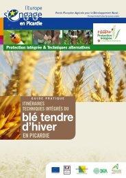 Itinéraires techniques intégrés du blé tendre d'hiver en Picardie