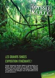 les grands singes exposition itinérante - Relais d'sciences