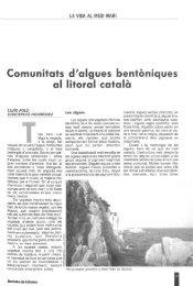 Comunítats d'algues bentóniques al litoral cátala - Raco