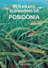 Generalitat de Catalunya Departament de Medi ... - Seagrass-Watch