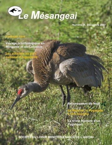 Numéro 26, Décembre 2007 - La Société du loisir ornithologique de ...