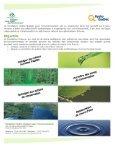Numéro 26, Décembre 2007 - La Société du loisir ornithologique de ... - Page 2