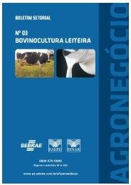Boletim Setorial do Agronegócio Bovinocultura leiteira