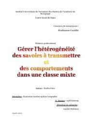Professeur Certifié Mémoire professionnel - IUFM