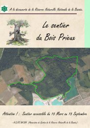 Le sentier du Bois Prieux - Réserve Naturelle La Bassée